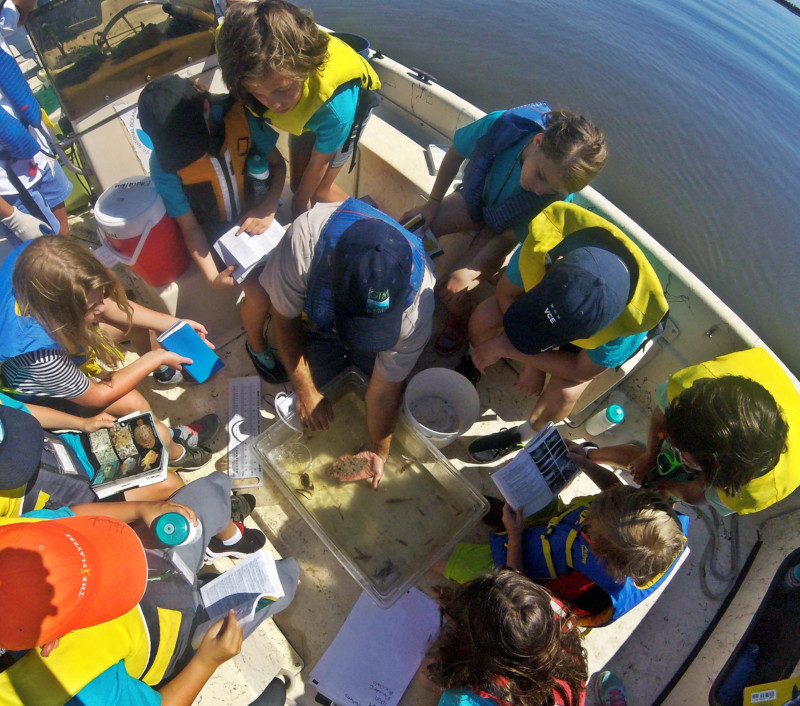 Fish Identification on the Boat