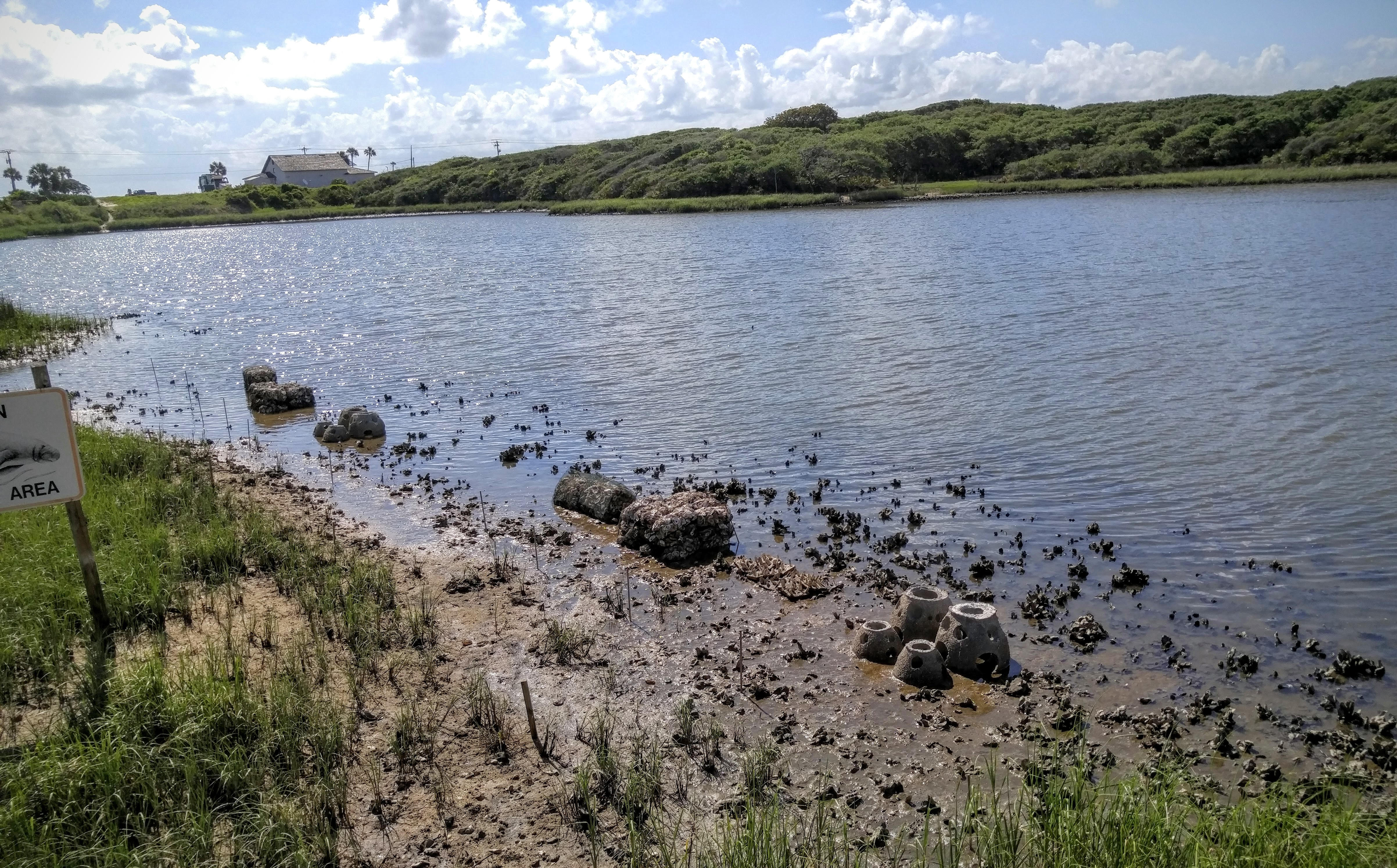 Demonstration living shoreline site