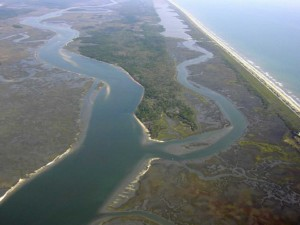 I heart Estuaries
