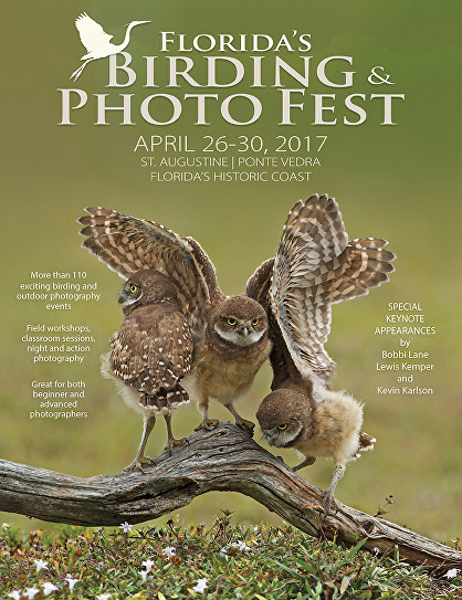 Florida Birding and Photo Fest 2017